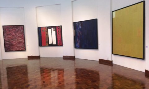 Exposição reúne 38 obras do artista goiano