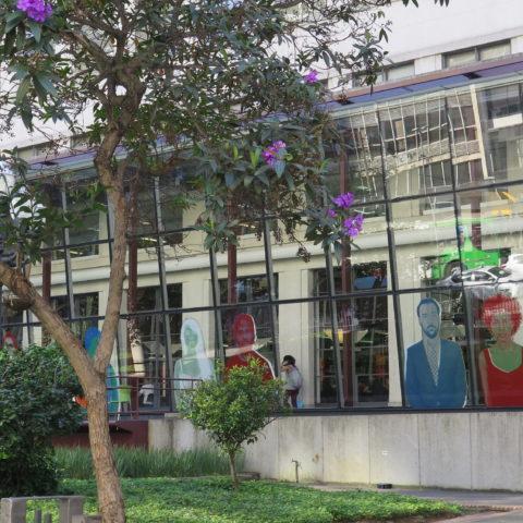 Biblioteca Mário de Andrade - Lugares para curtir sozinho