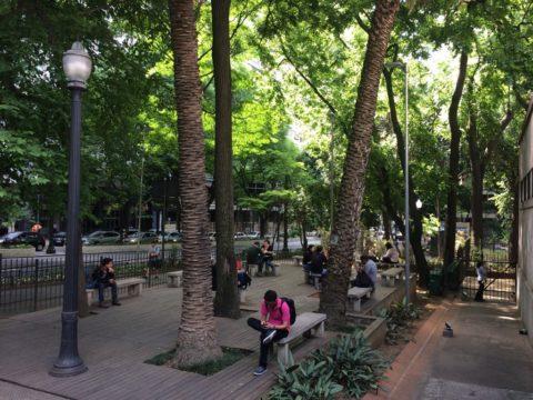 Jardim da Biblioteca Mário de Andrade