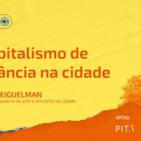 Giselle Beiguelman - capitalismo e vigilância